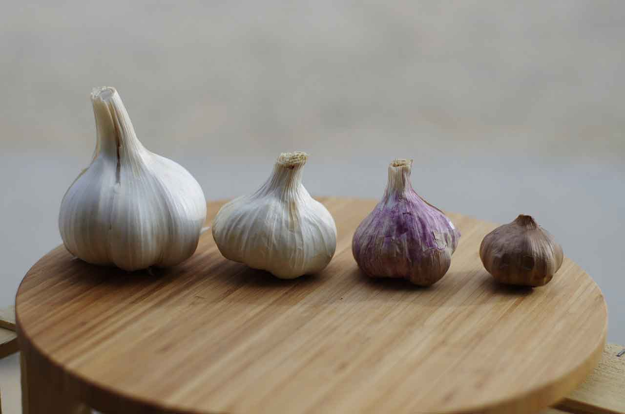 Garlic-Based-Supplements